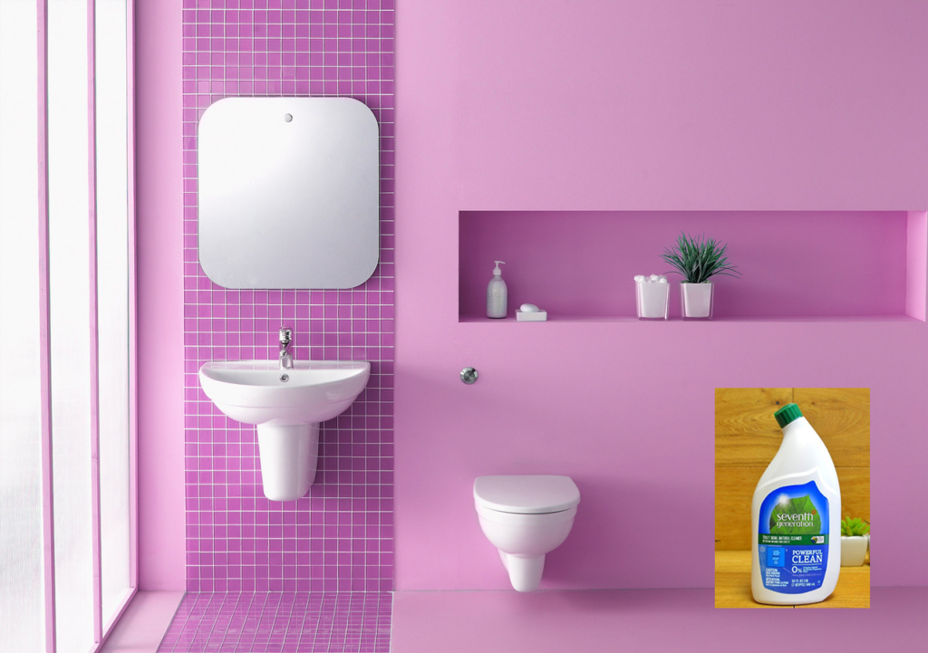 eco friendly cleaning products toilet cleaner